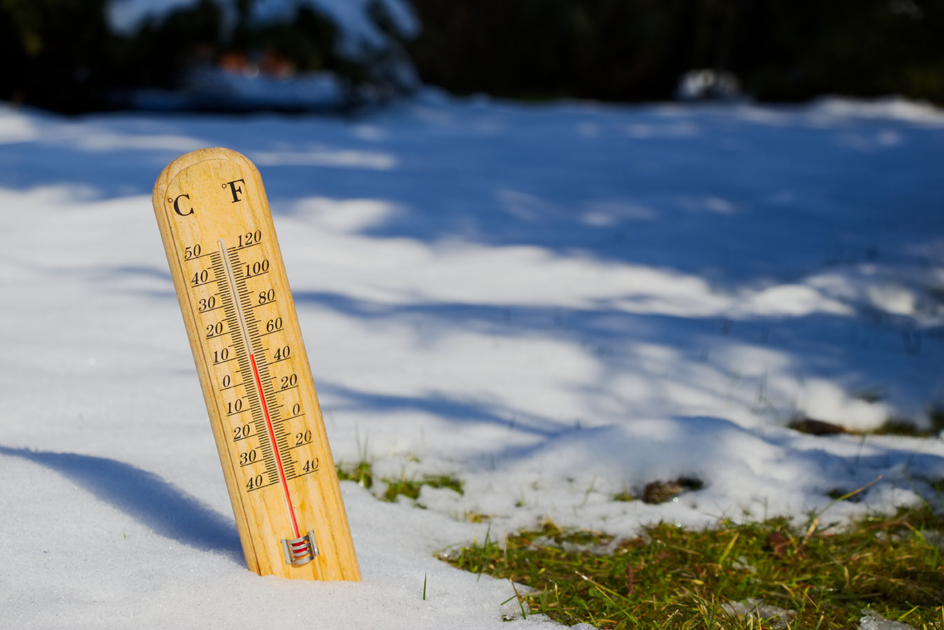 thermometer in snow