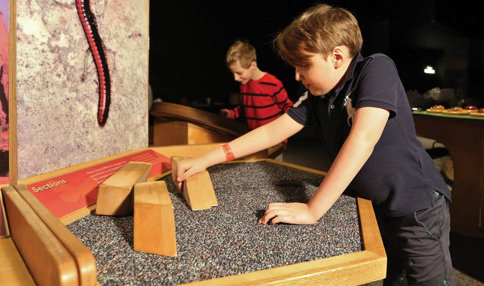 Children playing at Nature's Numbers exhibit at The Franklin Institute